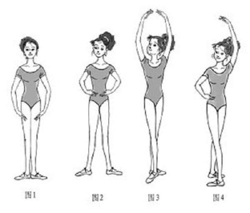 芭蕾中手的7种基本位置.jpg